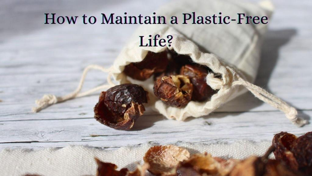 How to Maintain a Plastic-Free Life?
